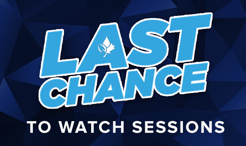 Thumbnail of Last Chance